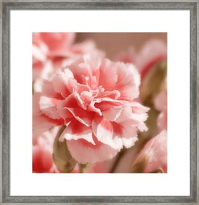 Think Pink Framed Print by Kim Hojnacki