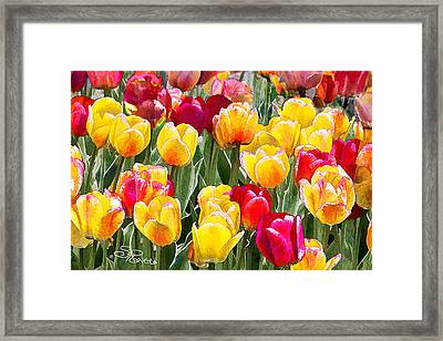 Think Spring Framed Print by Suni Roveto