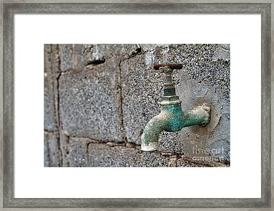Thirsty Framed Print by Stelios Kleanthous