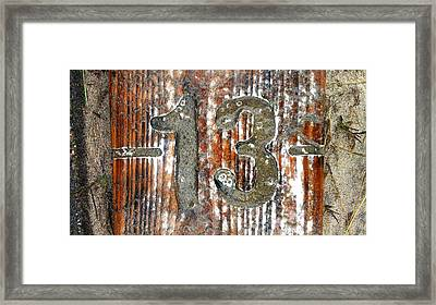 Thirteen Framed Print