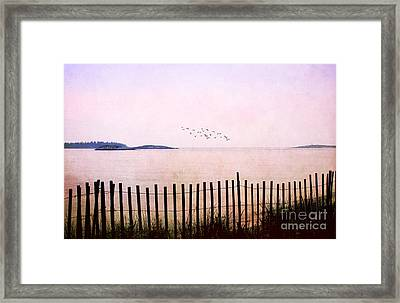 This Day Framed Print by Darren Fisher