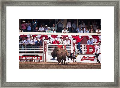 This Is Gonna Hurt Framed Print by Darren Langlois