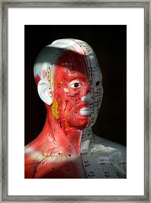This Is Hurting Framed Print by Jez C Self