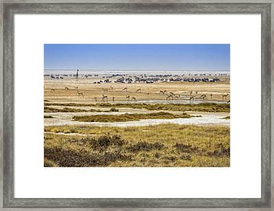 This Is Namibia No.  1 - Waterhole At Etosha Pan Framed Print by Paul W Sharpe Aka Wizard of Wonders