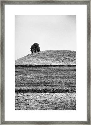 This Is Washington State No. 10b - Palouse One Tree Hill Framed Print by Paul W Sharpe Aka Wizard of Wonders