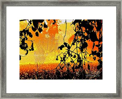 Thoughts Of Halloween Framed Print by Marilyn Smith