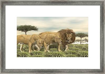 Framed Print featuring the digital art Three African Lions by Walter Colvin