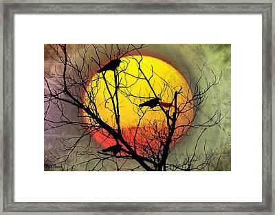Three Blackbirds Framed Print