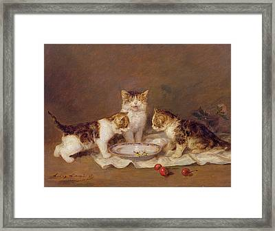 Three Cats - Red Cherries And Bees Framed Print by Louis Eugene Lambert