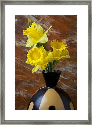 Three Daffodils Framed Print by Garry Gay