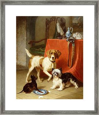 Three Dogs Framed Print by Conradyn Cunaeus
