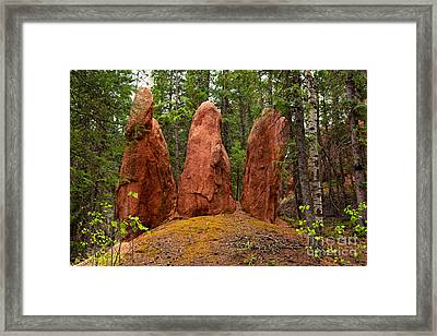 Three Earthly Sisters Framed Print