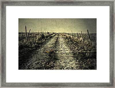 Three Flower Road Framed Print