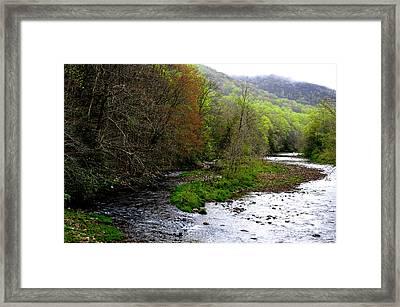 Three Forks Of Williams River  Framed Print by Thomas R Fletcher
