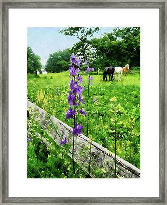 Three Horses In Distance Framed Print by Susan Savad