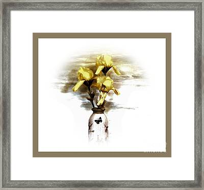 Three Irises Framed Print