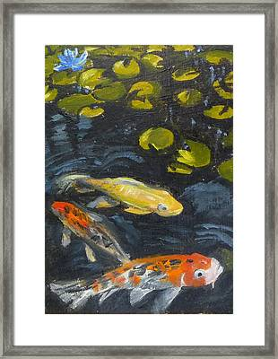 Three Koi And Lily Framed Print