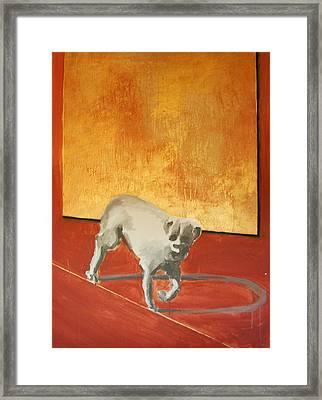 Three Legged Dog Framed Print by Jea DeVoe