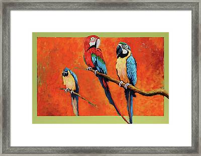 Captive Birds And Abstracted Rain Forest   Framed Print
