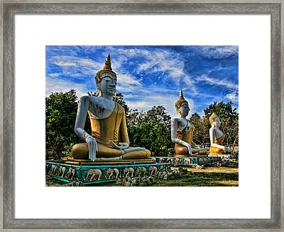 Three Of A Kind Framed Print by Adrian Evans