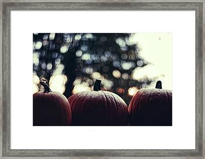 Three Pumpkins Framed Print by Erik T Witsoe