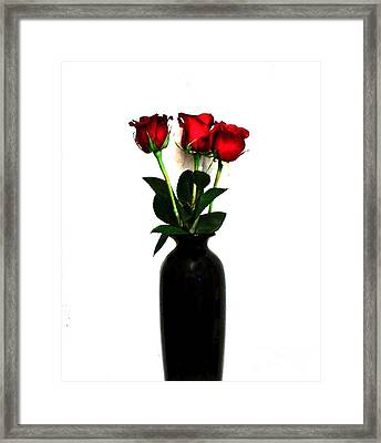 Three Roses Framed Print by Marsha Heiken