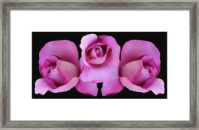 Three Roses Painterly Framed Print by Ernie Echols