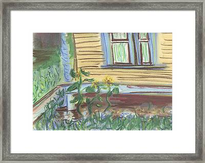 Framed Print featuring the pastel Three Sunflowers By The Porch by Denny Morreale
