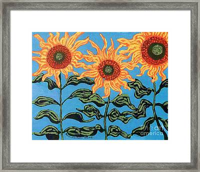 Three Sunflowers IIi Framed Print by Genevieve Esson