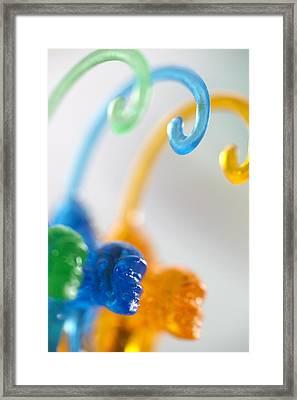 Three Tails Framed Print by Greg Kopriva