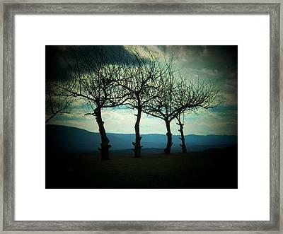 Three Trees Framed Print by Joyce Kimble Smith