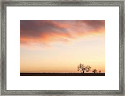 Three Trees Sunrise Sky Landscape Framed Print by James BO  Insogna