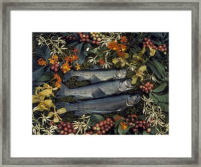 Three Trout Surrounded By Coffee Framed Print