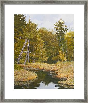 Three Turtles Lake Conestee Framed Print