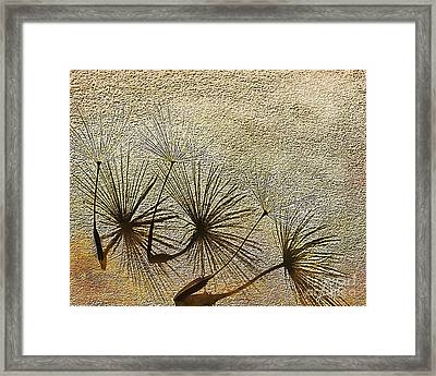 Three Wishes Framed Print