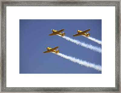Three Yellow Harvards Flying In Unison Framed Print