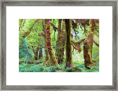 Through Moss Covered Trees Framed Print by Heidi Smith