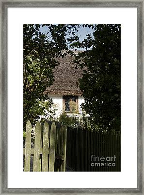 Through The Bushes To The Window Framed Print