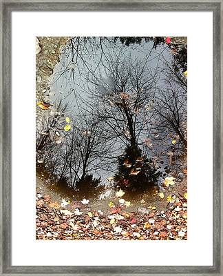 Through The Looking Glass Framed Print by Elijah Brook