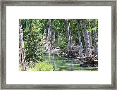 Through The Looking Glass Framed Print by Elizabeth Hart
