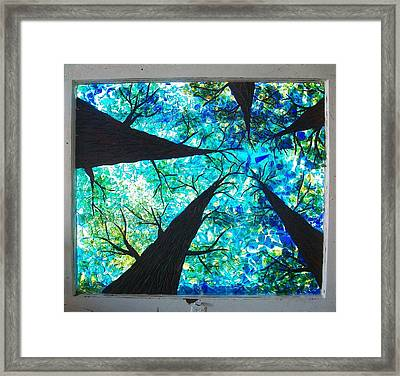 Through The Trees Framed Print by Desiree Soule