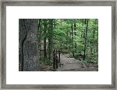 Through The Woods Framed Print by CGHepburn Scenic Photos