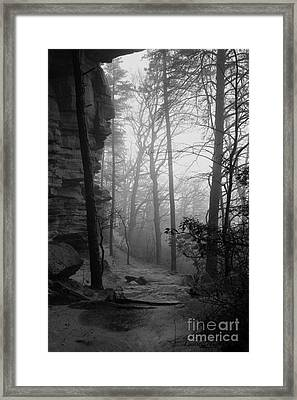 Through These Woods A Path Was Made Framed Print by Laurinda Bowling