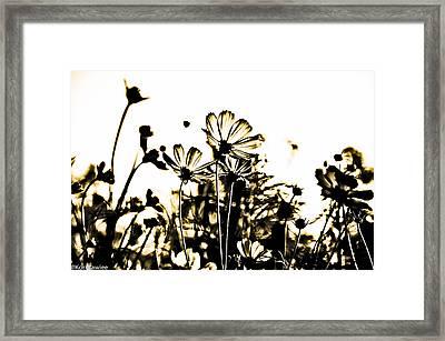 Through Your Eyes Framed Print