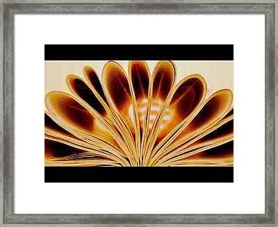 Framed Print featuring the photograph Throughout The Pages by Rima Biswas