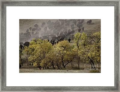Thunder In The Black Hills Framed Print
