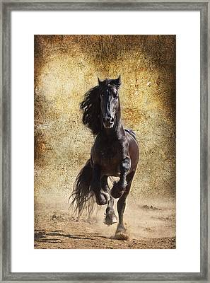 Thundering Stallion D6574 Framed Print by Wes and Dotty Weber