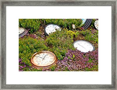 Thyme And Time Framed Print by Chris Thaxter