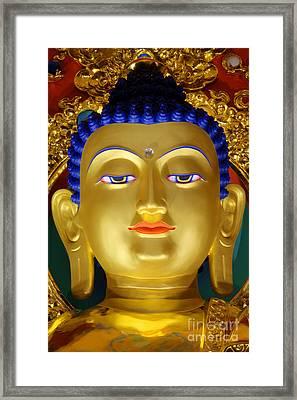 Tibetan Bhudda 3 Framed Print by Bob Christopher
