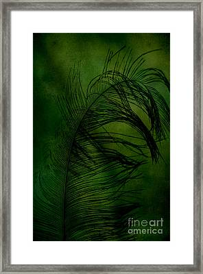 Framed Print featuring the photograph Tickled Green by Robin Dickinson